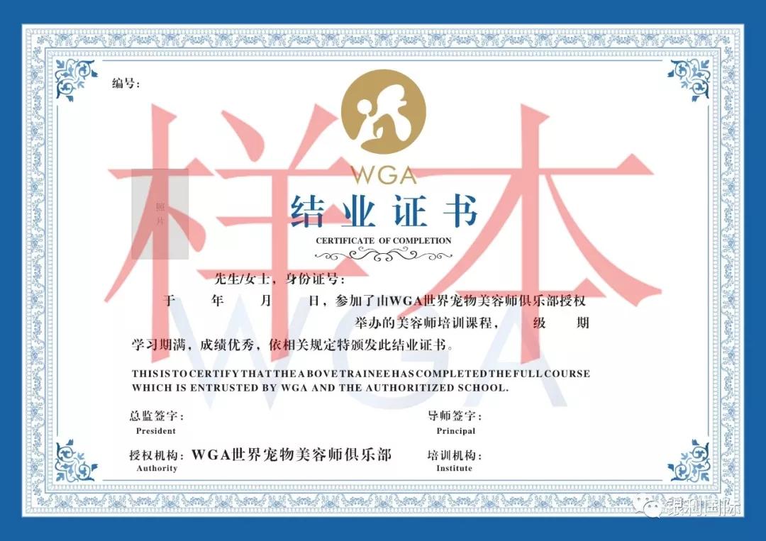 证书2.webp.jpg